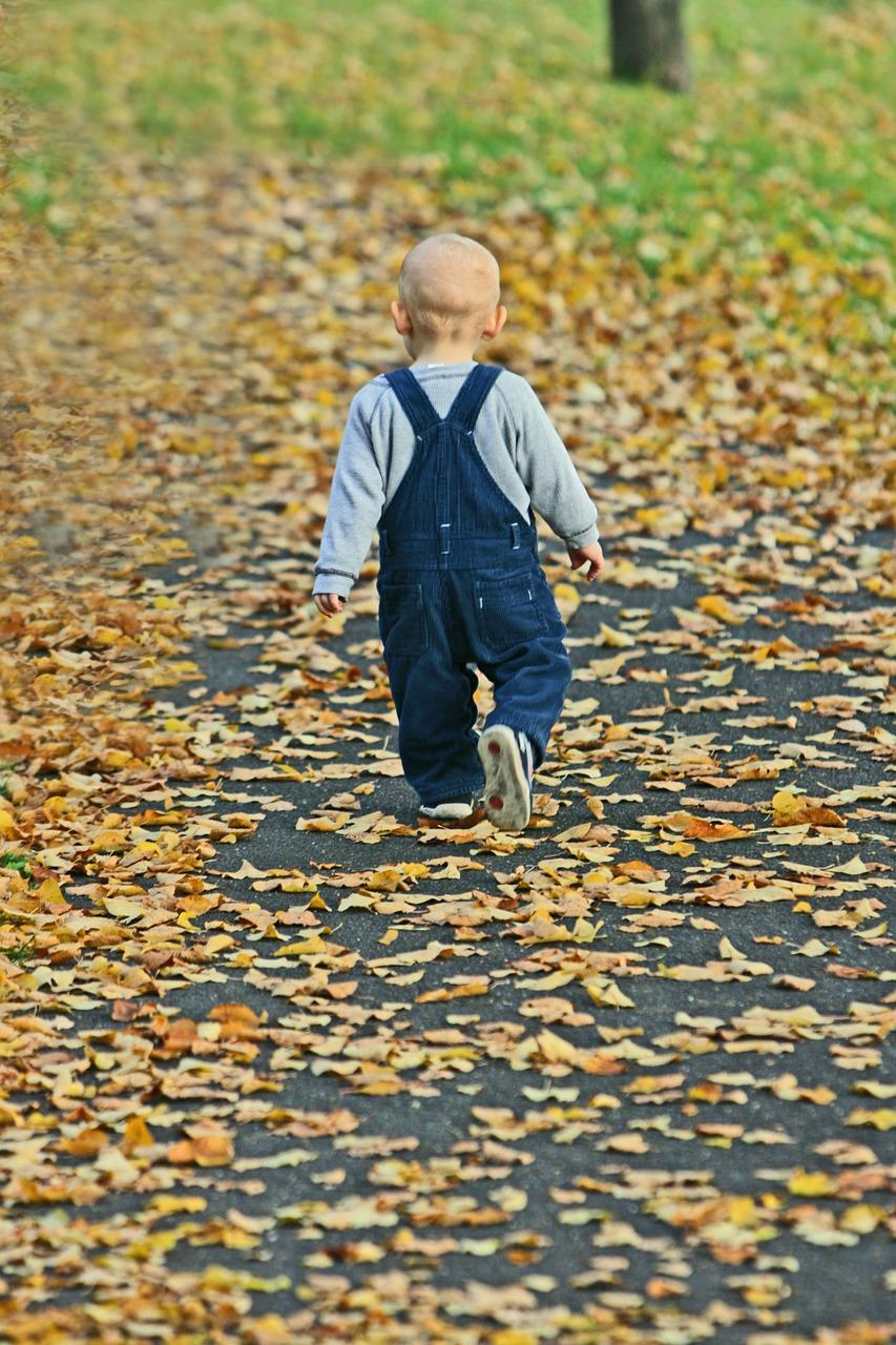 baby, park, autumn